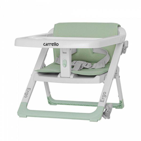 Стульчик-бустер для кормления CARRELLO Ergo CRL-8403 Ash Green